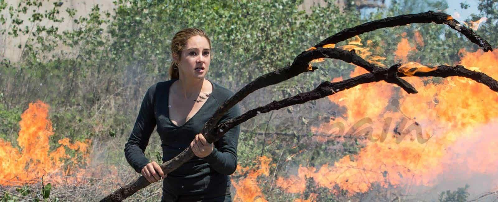 Shailene Woodley, detenida