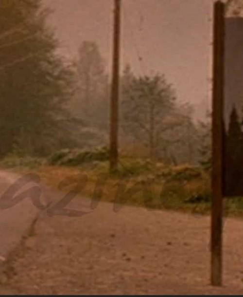 """Vuelve """"Twin Peaks"""""""