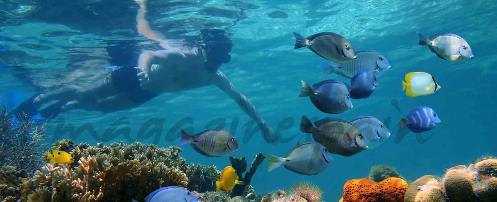 Siete experiencias para disfrutar del agua alrededor del mundo