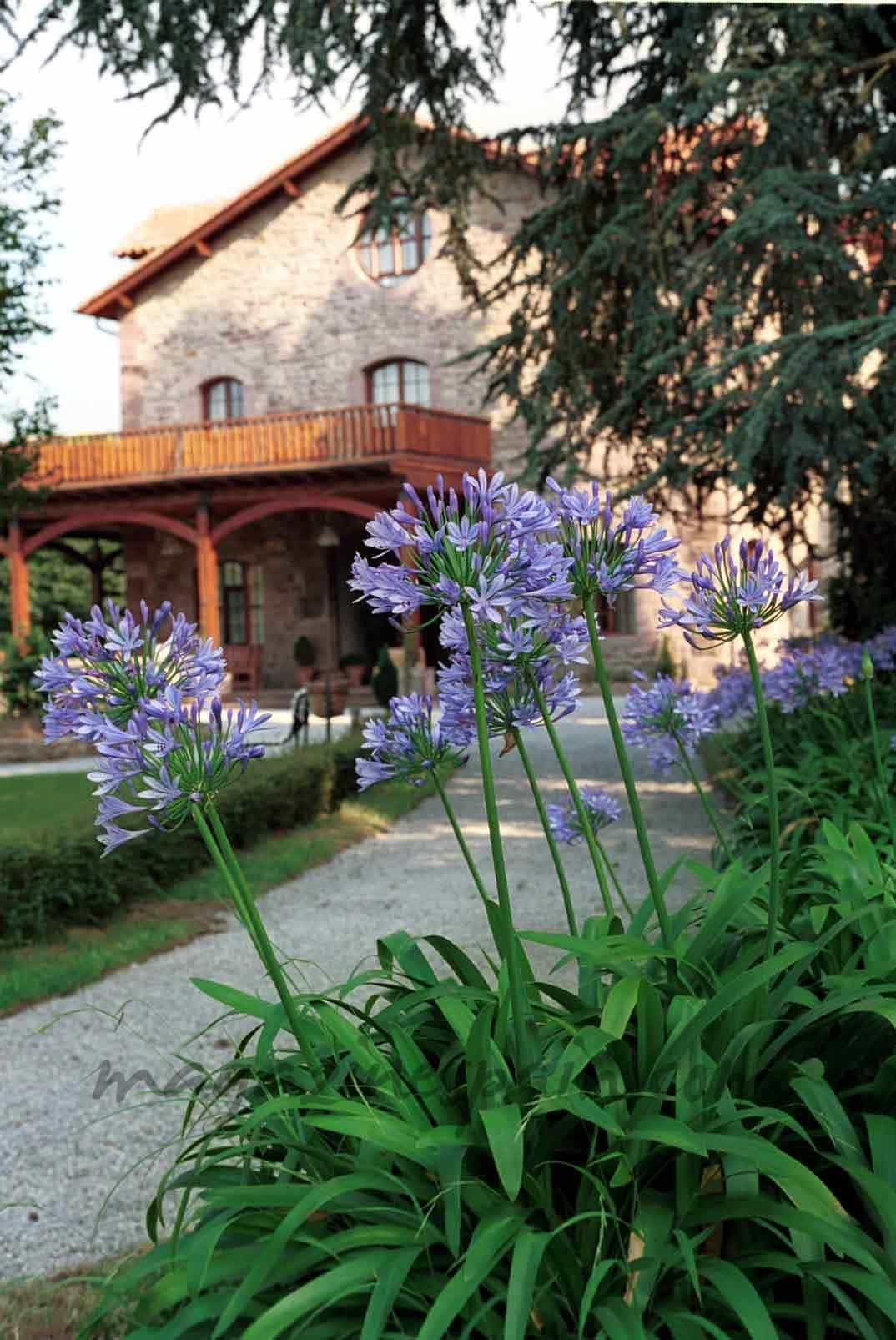 Un espacio nico para relajarse - Jardin de carrejo ...