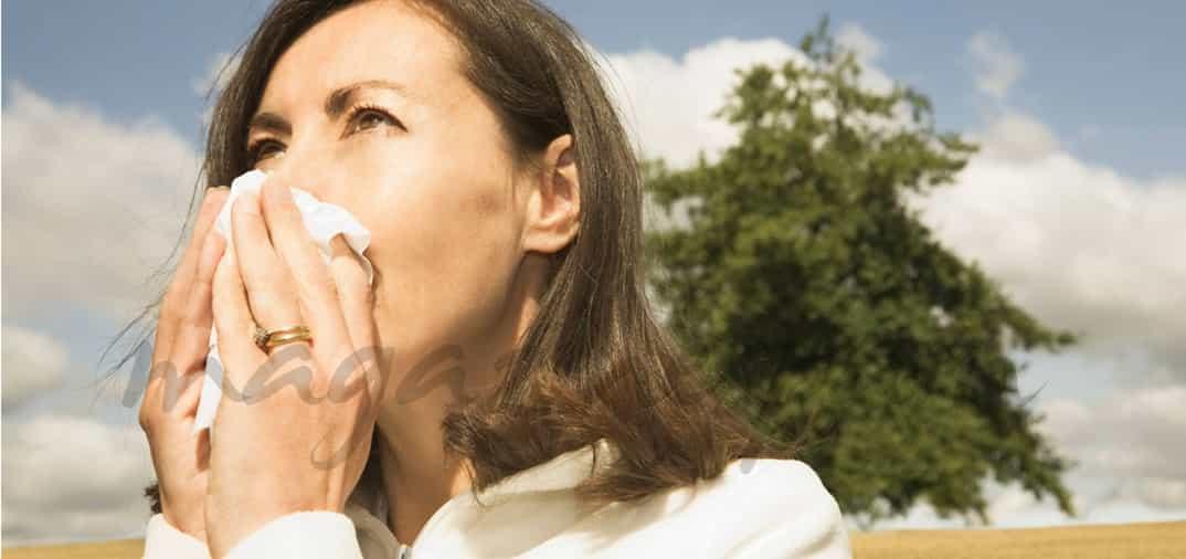 Gripe estacional y vacunación antigripal