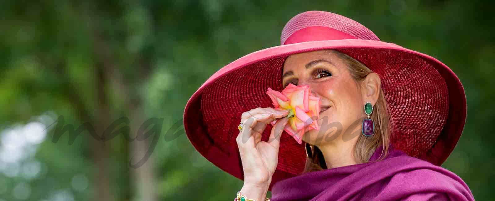 Máxima de Holanda, reina entre rosas