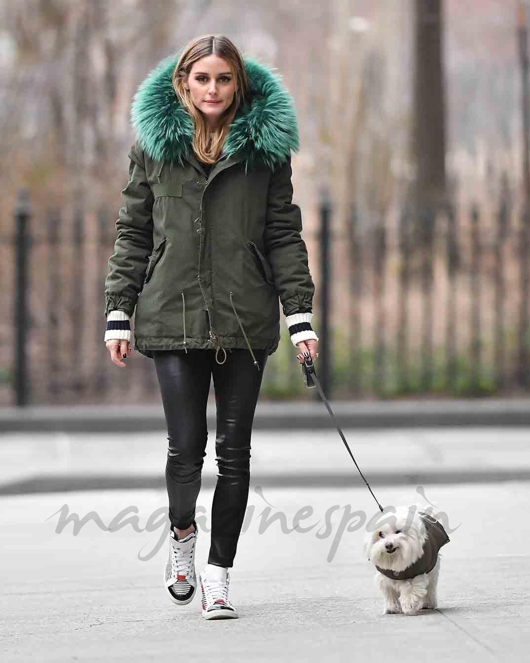 olivia palermo pasea a su perro