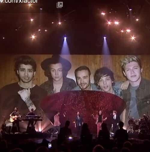 One Direction se despiden de la música