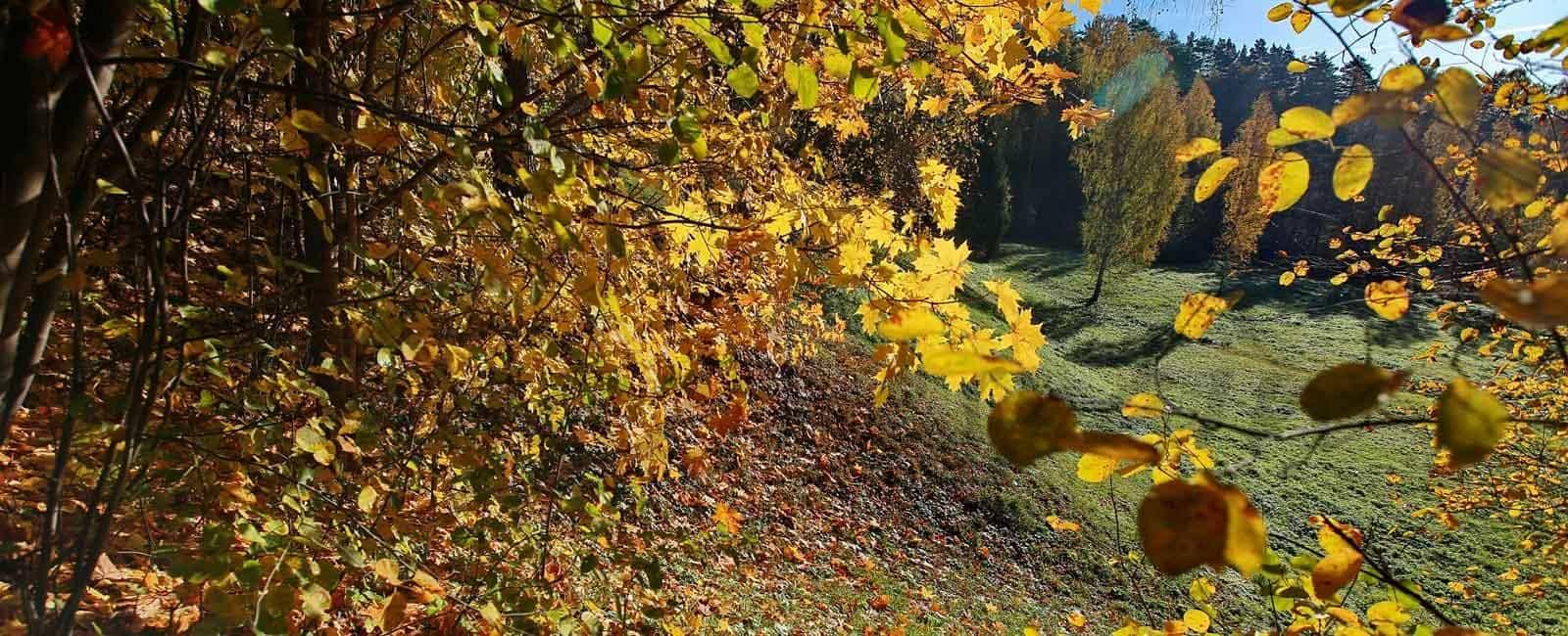 Disfruta del otoño en el Valle del Jerte