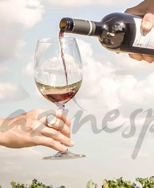 La Ruta del Vino de Ribera del Duero: un fin de semana lleno de sabor y tradición