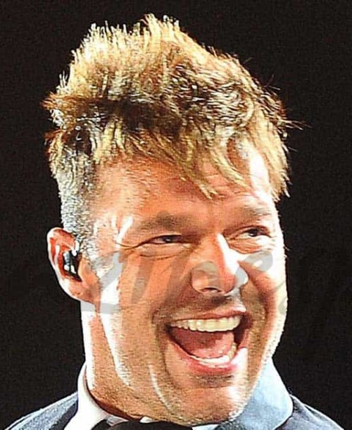 Así eran, Así son: Ricky Martin 2006-2016