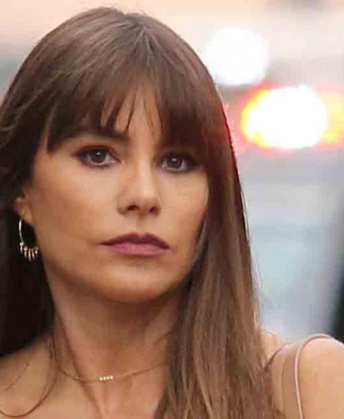 Sofía Vergara ejerce de ama de casa desmintiendo los rumores de separación