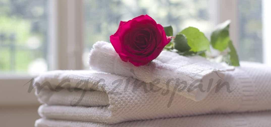 Sant Jordi: La belleza con rosas