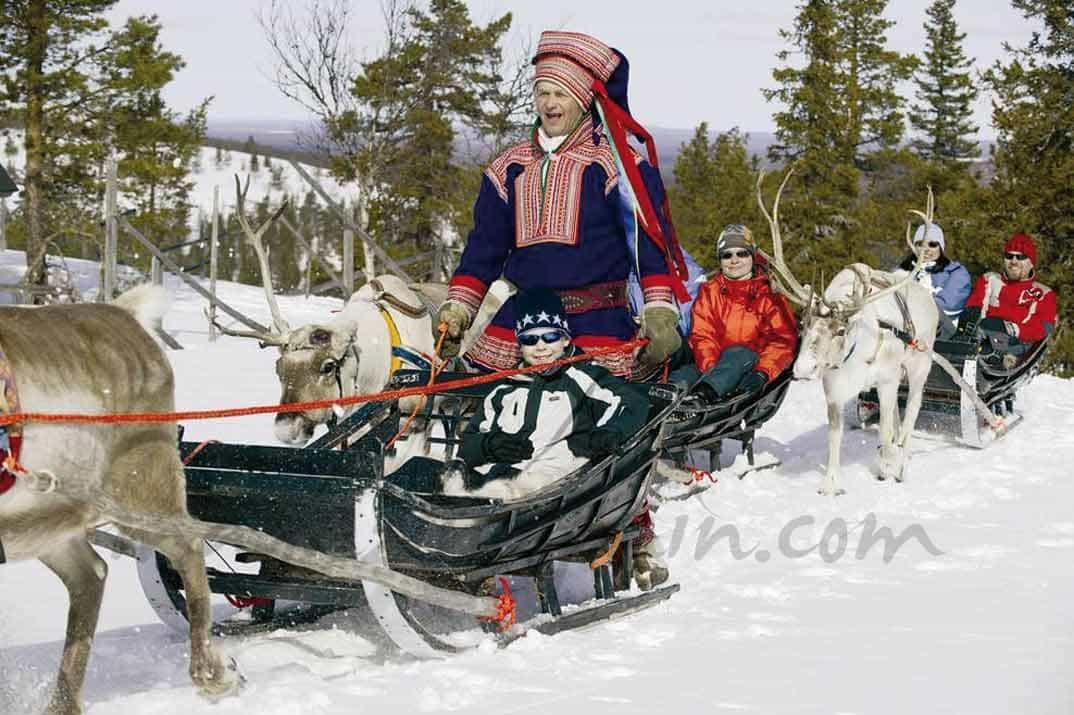 trineo-de-huskies-y-de-renos