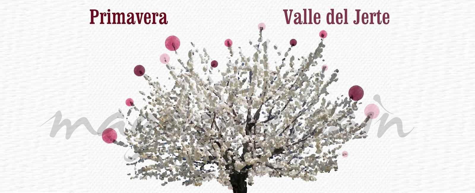 El Valle del Jerte… El despertar de la primavera